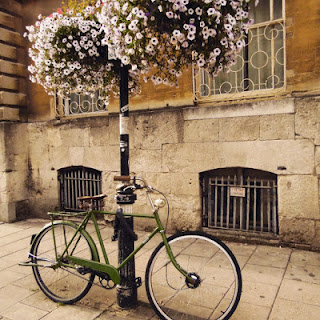 Flowers and Bike, Oxford