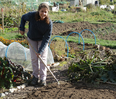 Belinda hoeing the area ready for garlic