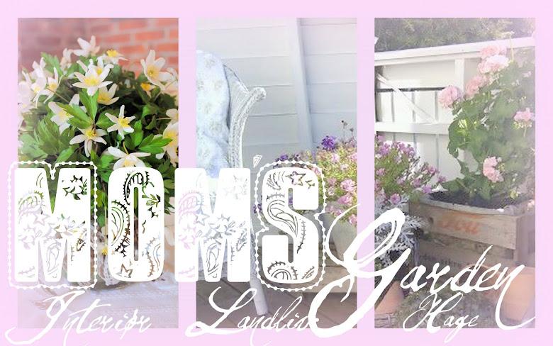 Mom`s garden