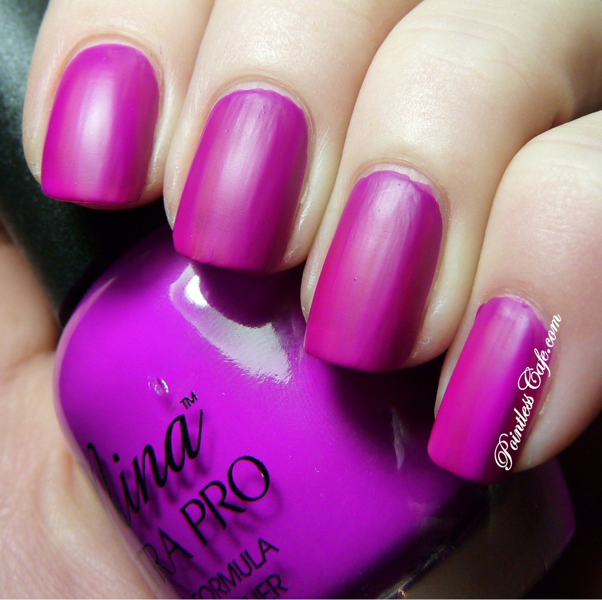 Nina Ultra Pro Punki Purple - Swatches and Review | Pointless Cafe