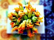 . bel pò di questi bellissimi fiori di zucca che coltiva nel suo orticello . (fiori)