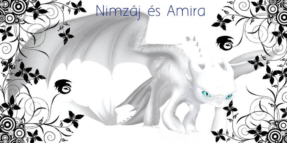 Nimzáj és Amira