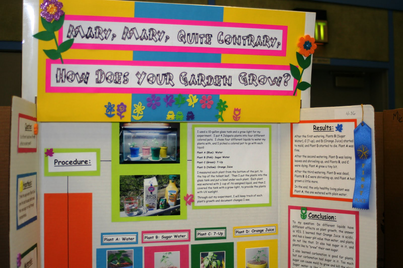 science projects for 3rd grade