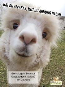 Alpaka Grundlagen Seminar April 2017