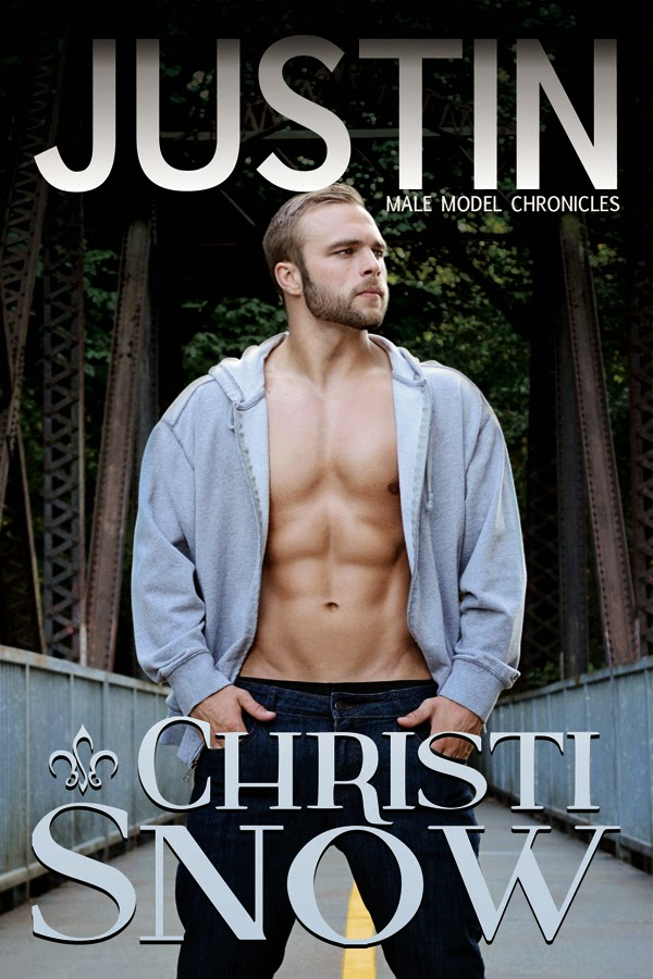 Introducing the Male Model Chronicles by Christi Snow