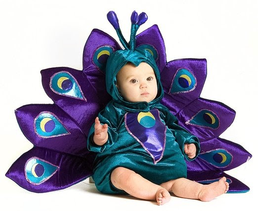 Baby & Toddler Peacock Halloween Costume