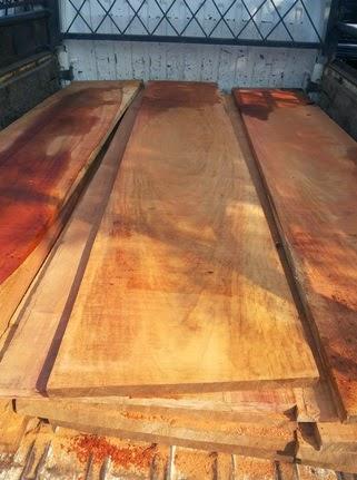 jual kayu angsana murah