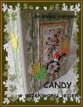 Candy w oczekiwaniu jesieni