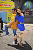 Real star Telugu movie gallery-thumbnail-13
