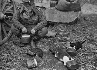 http://4.bp.blogspot.com/-NvL9UX09BoQ/TiRW3FzMq3I/AAAAAAAAAWI/dA6C4zUWzuM/s1600/Finnish+Soldier+and+Kittens+WWII.jpg
