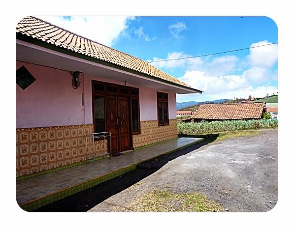 Paket Wisata Bromo - Cendani Home Stay Cemara Lawang