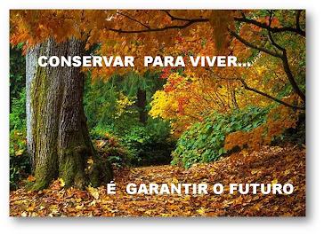 Floresta é vida
