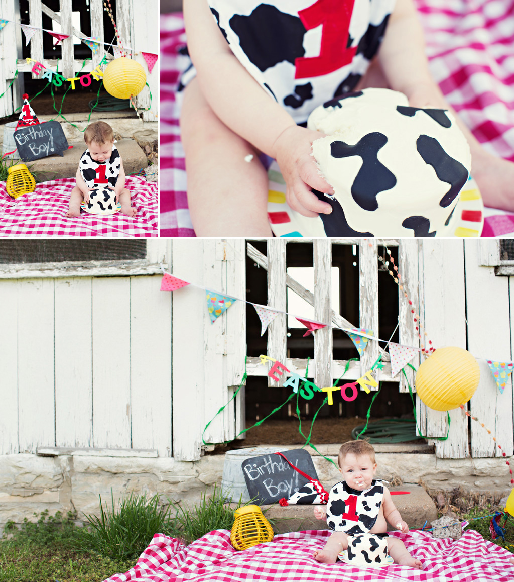 LeLe Photographers: Happy 1st Birthday Easton