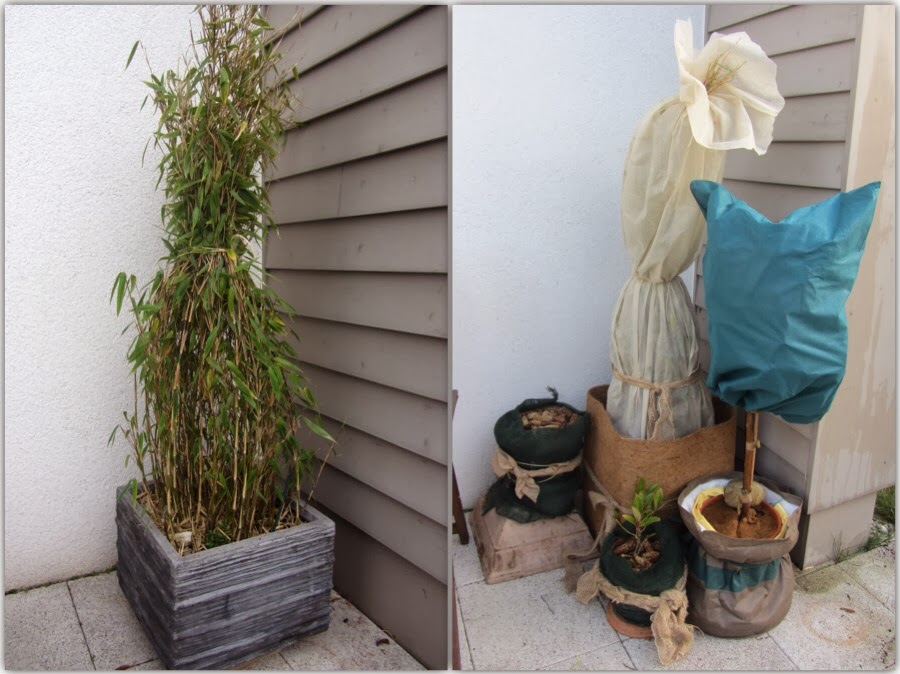 wrapped verh llter garten bergblumengarten. Black Bedroom Furniture Sets. Home Design Ideas