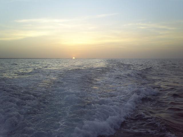 Foto tomada durante la campaña de investigacion Ago-2008 del Estudio de linea base para el ordenamiento Pesquero de Isla la Tortuga, Venezuela