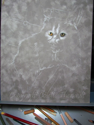 Pet Portrait Commissions by Colette Theriault Canadian Animal Artist
