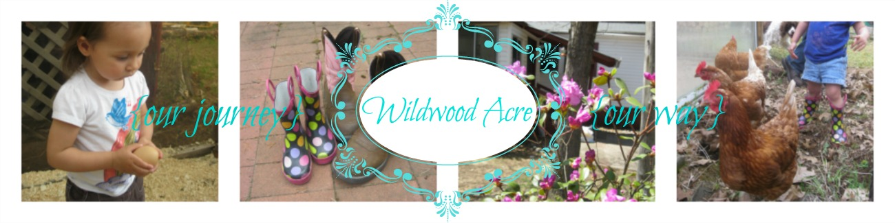 Wildwood Acre