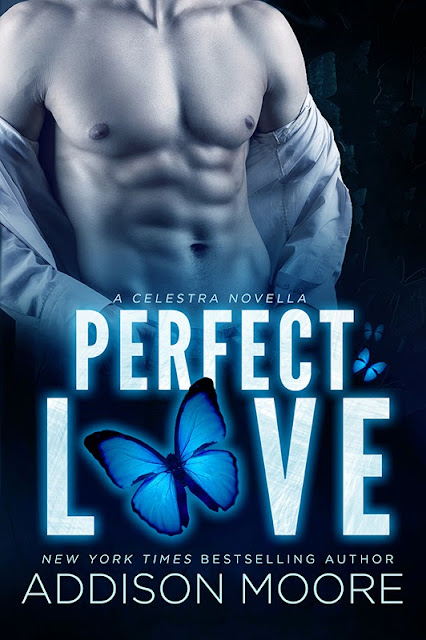 Cover Reveal: Perfect Love(A Celestra Novella) by Addison Moore