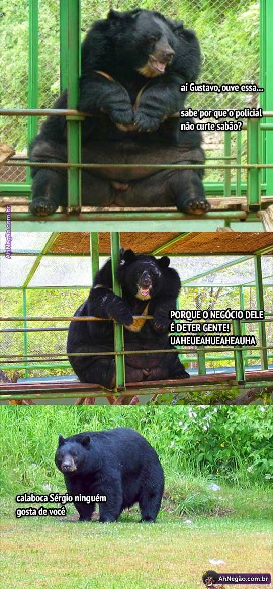 Urso Obeso