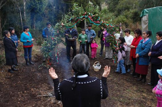 Resultado de imagen para practicas rituales mapuches