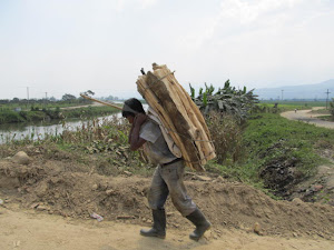 Taking home wood for cooking