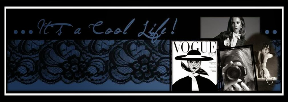 IT´S A  COOL LIFE!!