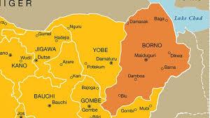 6 Wedding Guests Killed As Suicide Bomber Invades Venue In Borno