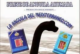 LA ANGUILA DEL MEDITERRANEO.COM