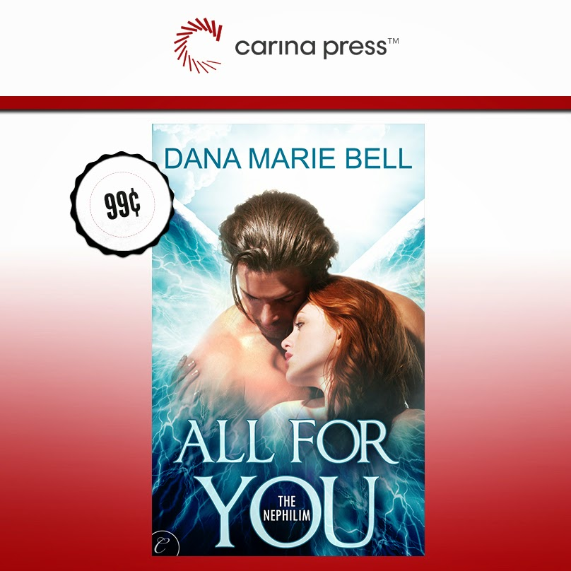 All For You, now $0.99 Across All eBook Retailers!