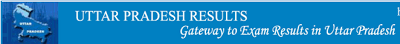 UP Board Class 10 results 2013
