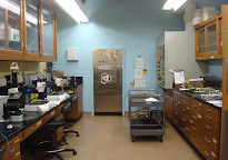The Plant Clinic Lab