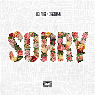 https://geo.itunes.apple.com/us/album/sorry-feat.-chris-brown/id1046136436?i=1046136438&at=1l3vqPo&mt=1&app=music