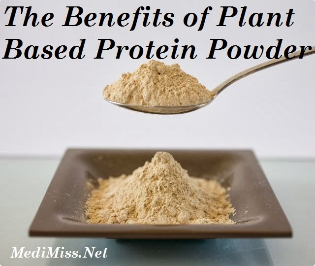 Plant based protein benefits
