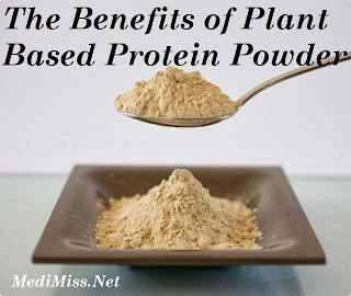The Benefits of Plant Based Protein Powder