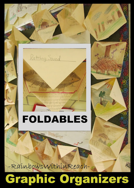 photo of: Graphic Organizers on Bulletin Board, Displaying foldables on bulletin board