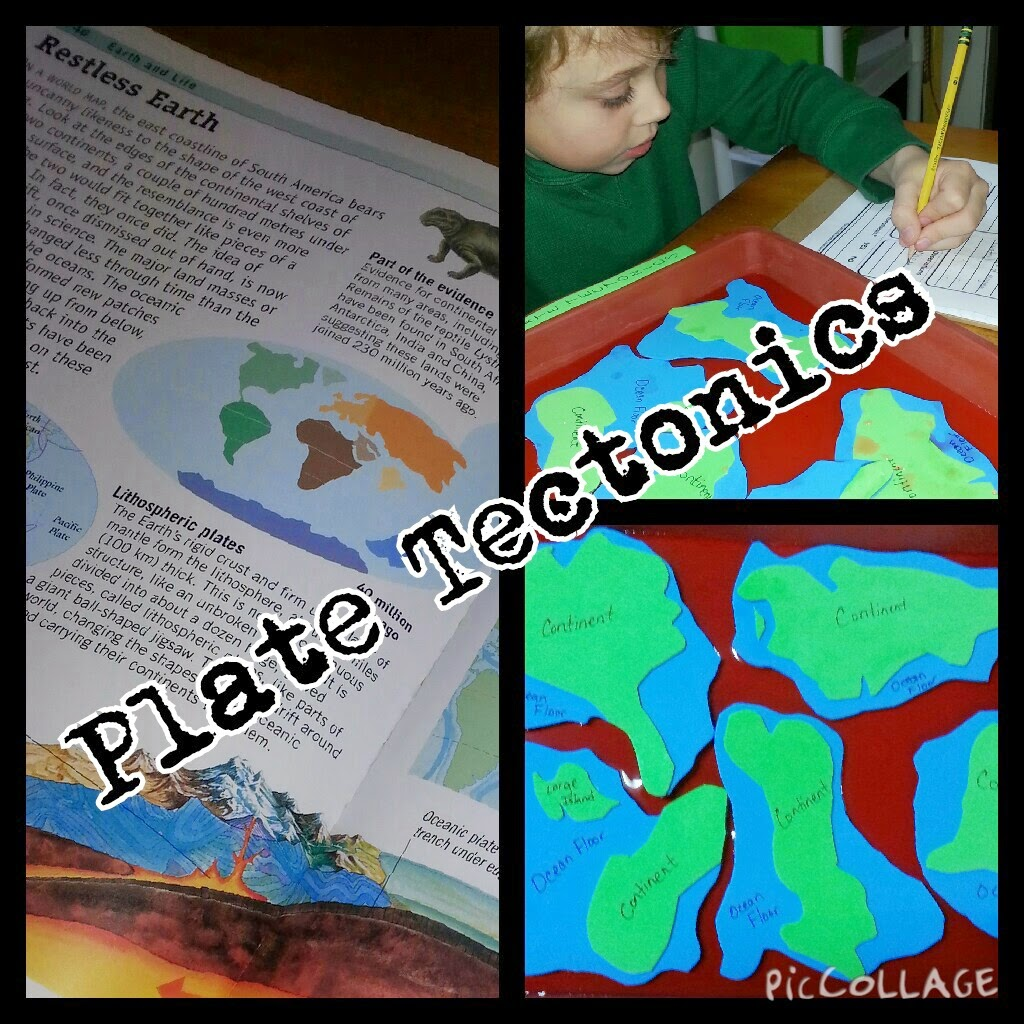 Second Grade Science Plate Tectonics