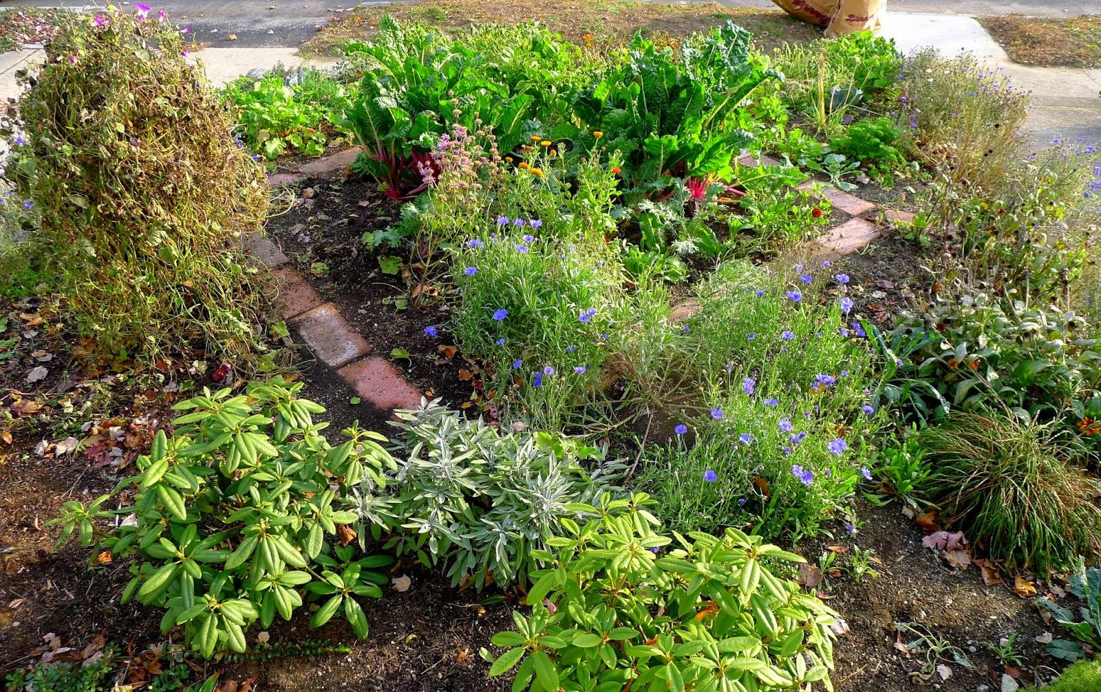 Less Noise, More Green Edible Landscape Project November 2014
