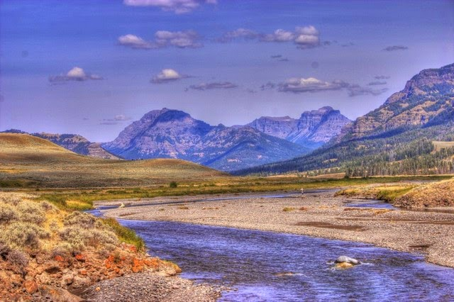 39. Yellowstone National Park (Jackson Hole, USA)