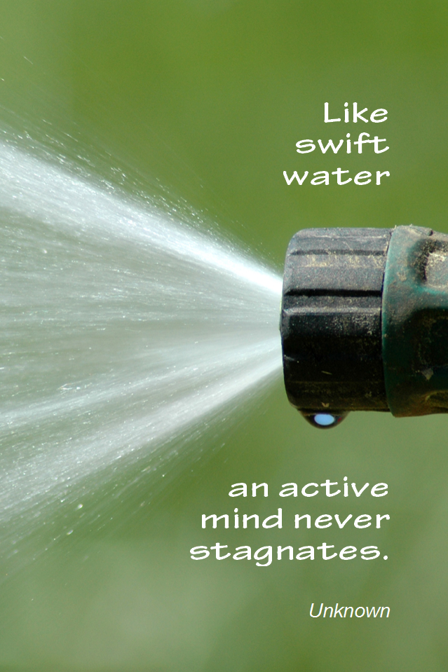 visual quote - image quotation for Learning - Like swift water an active mind never stagnates. Unknown