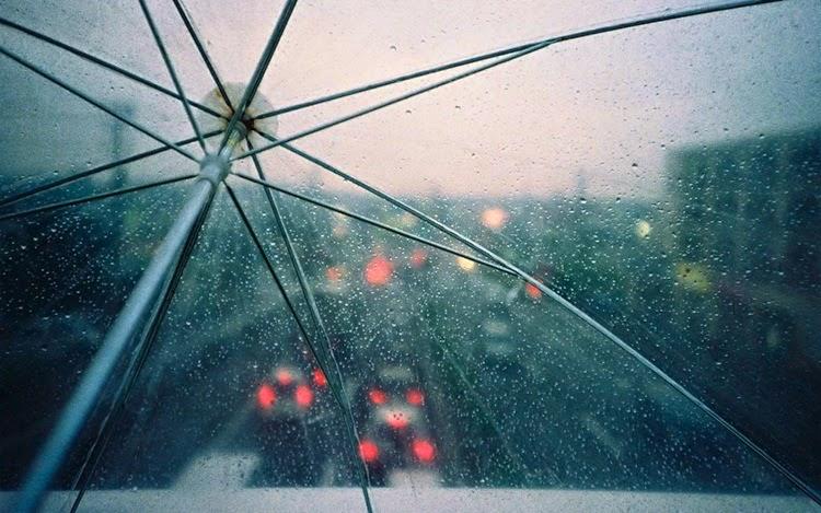 Rain Drops Through Transparent Umbrella