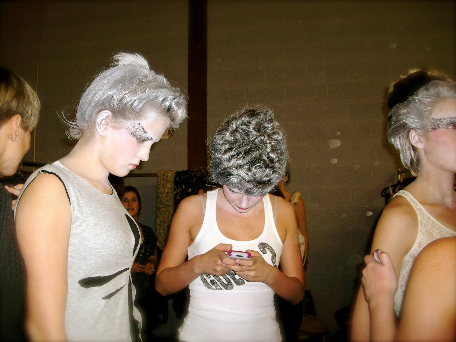 temporary silver hair dye