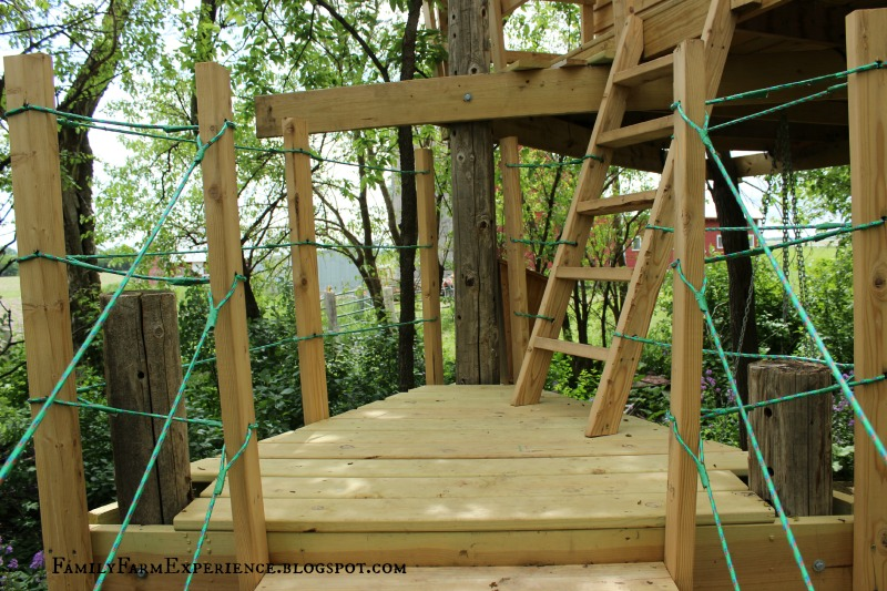 Circular Tree House family farm experience: diy how to build your own treehouse