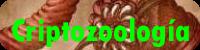 Criptozoo