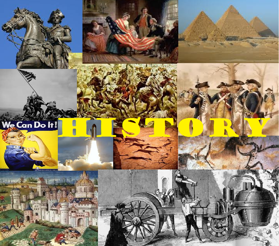 essay on why we study history