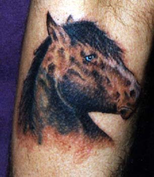 Animal Tattoo Horse