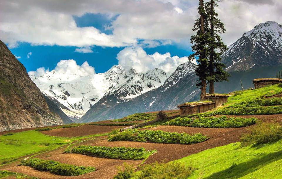 landscapes of pakistan The geography of pakistan (urdu: جغرافیۂ پاکِستان  ) is a profound blend of landscapes varying from plains to deserts, forests, hills, and.