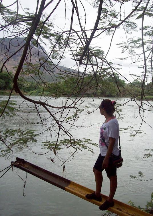 Observando a natureza