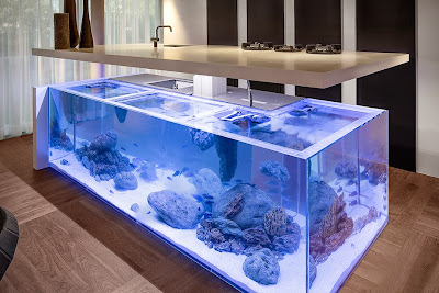 Φέρτε τον ωκεανό στην κουζίνα σας, και κάντε την μοναδική