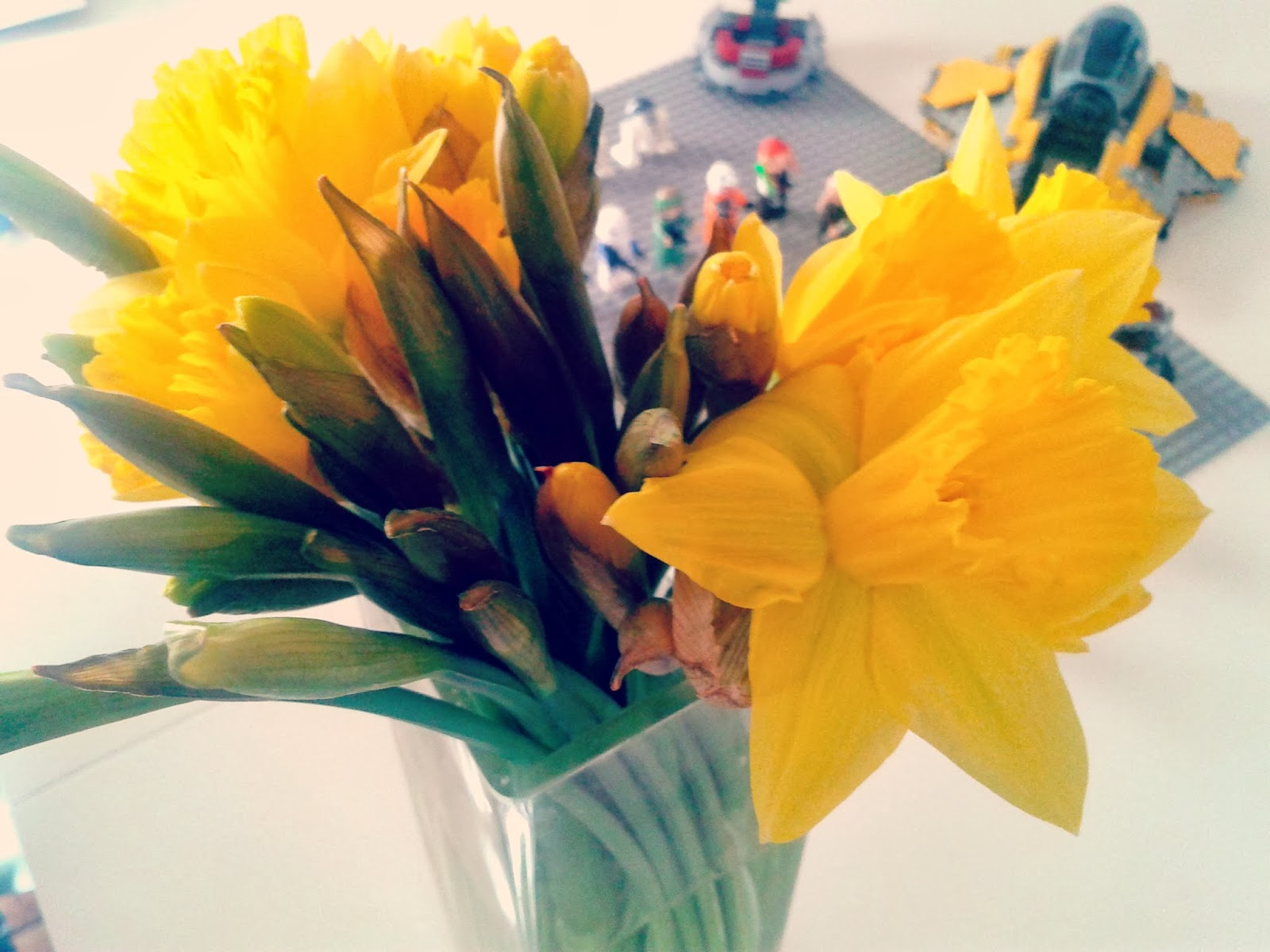 Project 365 day 55 - Daffodils and Lego // 76sunflowers