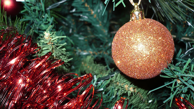 un' immagine dell' albero di Natale